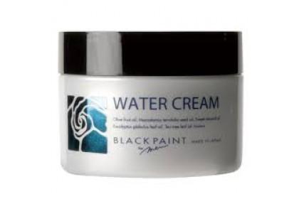 [MPLUS] BLACKPAINT Water Cream For Men 100g