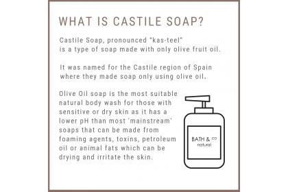 [MPLUS] BATH & CO Castile Liquid Soap Peppermint Spearmint 240ml