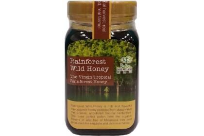 [MPLUS] OASIS Rainforest Wild Honey 500g